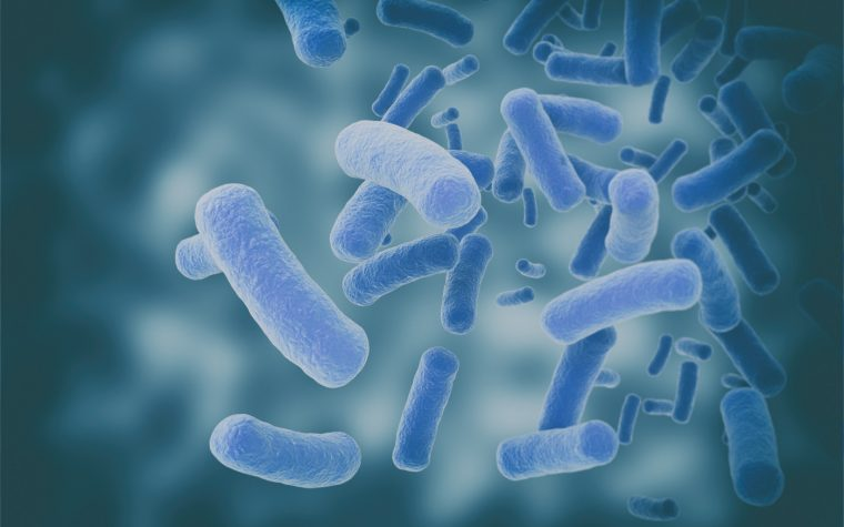 Bacteria in Mouth May Trigger Inflammation Damaging to Salivary Glands