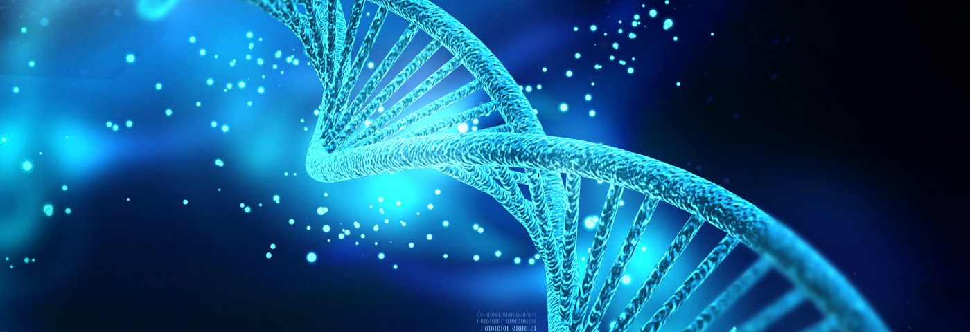 Increased Gene Activity Linked to Immune Cell Malfunction, Study Reveals