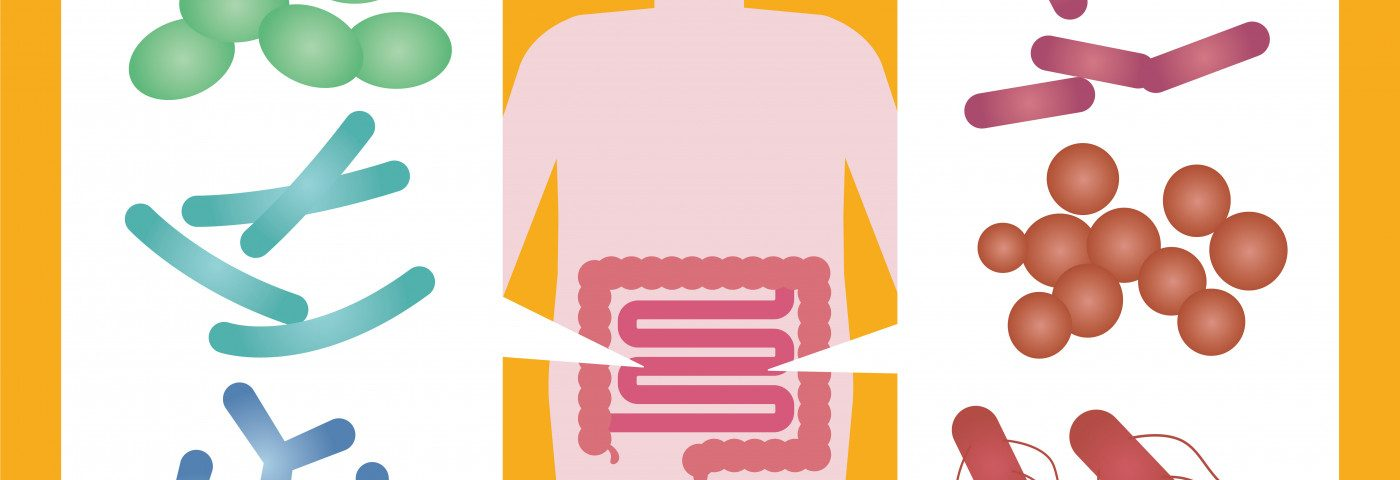 Study Links Altered Gut Microbiome in Sjogren's to Systemic Inflammation